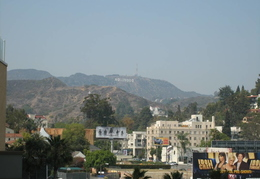 View up into Hollywood Hills