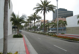 View down Rodeo Drive