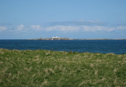 Towards Inner Farne from cliff top