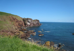 St Abbs Head Nature Reserve